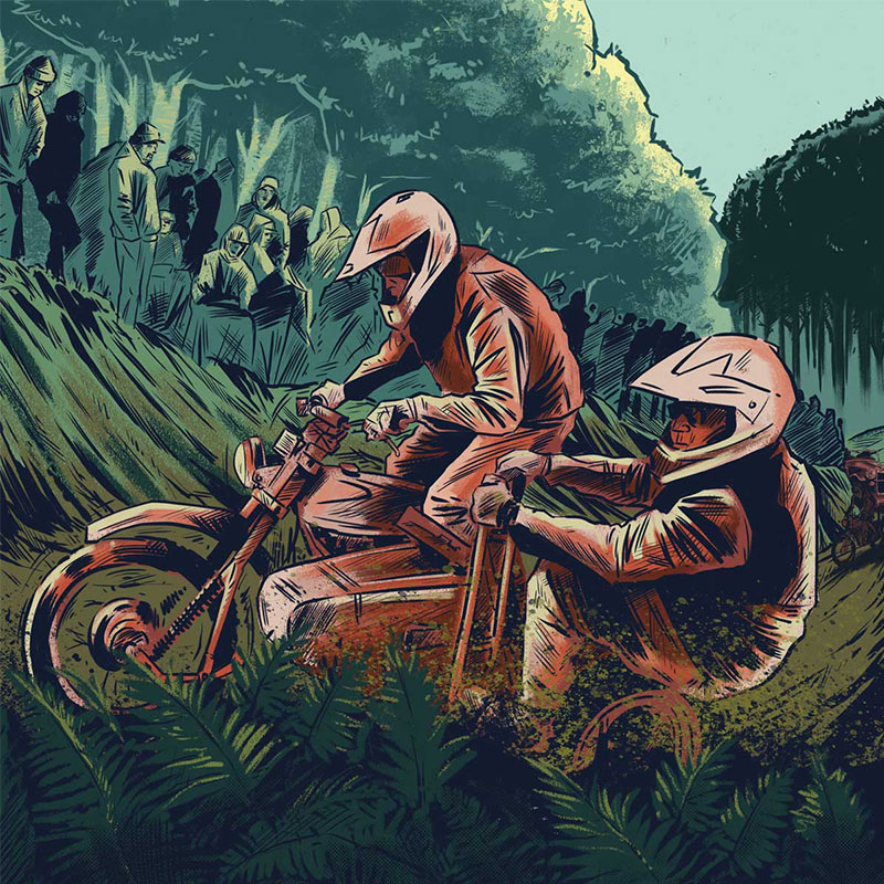 Exeter illustration